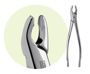 150A Maxillary Forceps