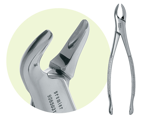 Premier Dental | 151 Mandibular Forceps