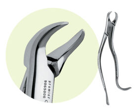 16 Mandibular Forceps